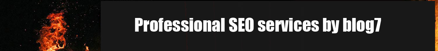 Professional-SEO-Services-by-blog7